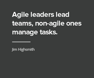 Agile Leaders Image