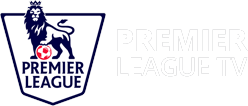 Premier League Case Study Logo