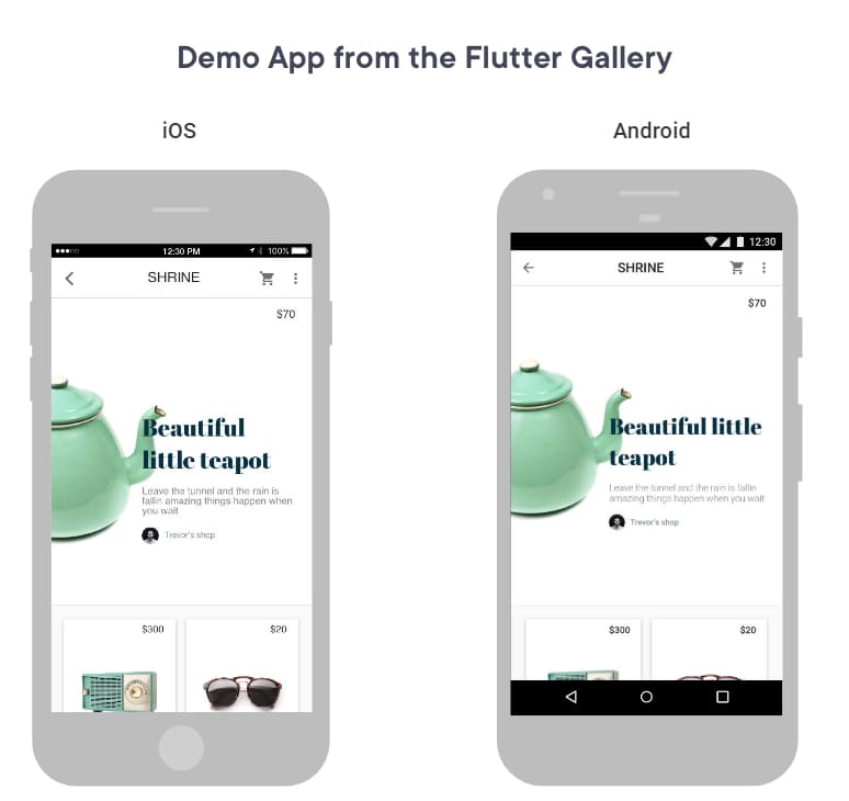 MVP development using Flutter app in android and iOS
