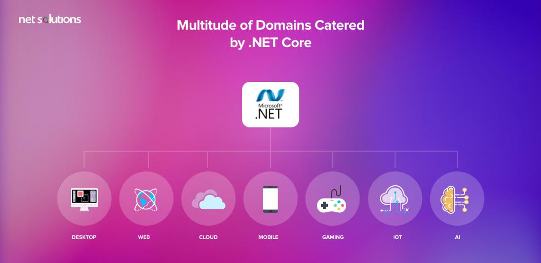 Multitude of Domain