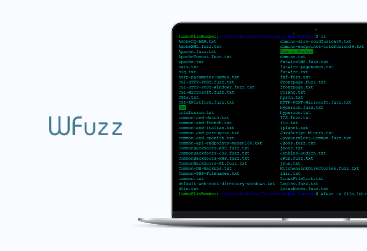 Wfuzz tool for security testing