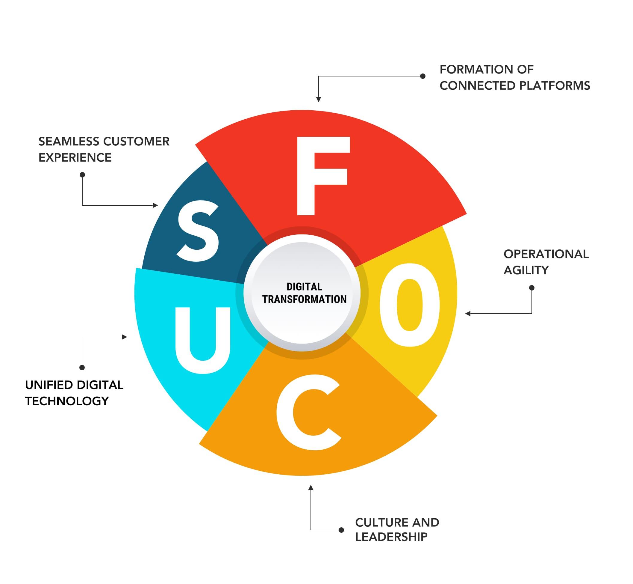 Net Solutions FOCUS framework