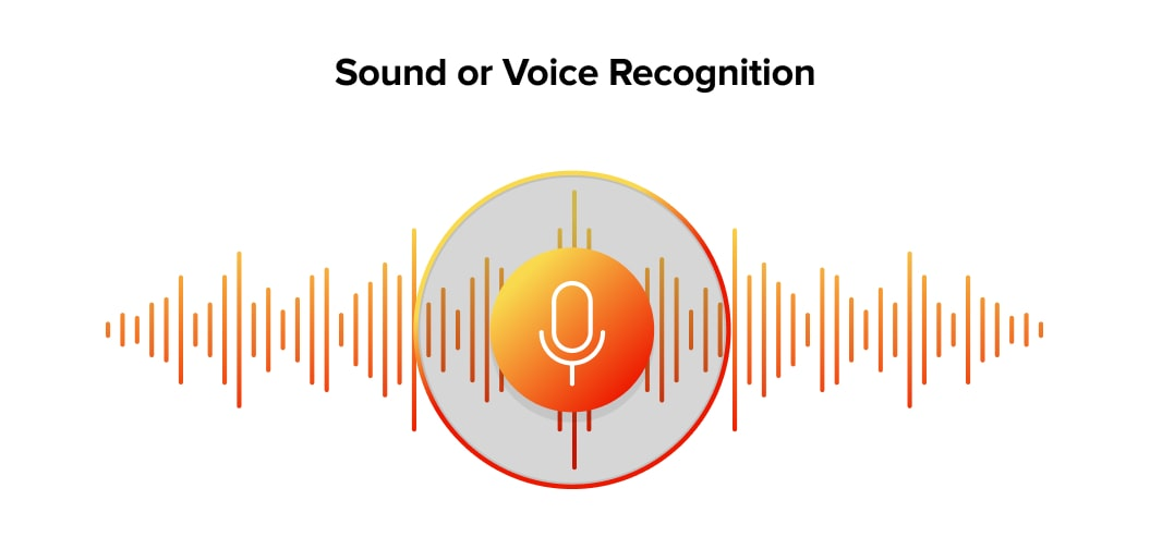 Sound or Voice Recognition