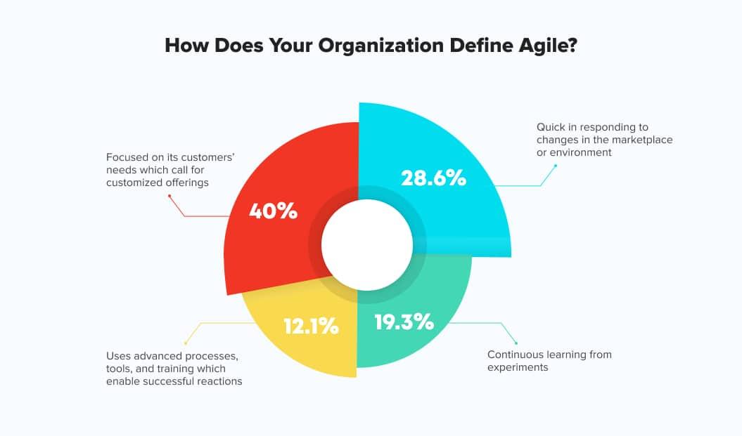 Agile definition Net Solutions