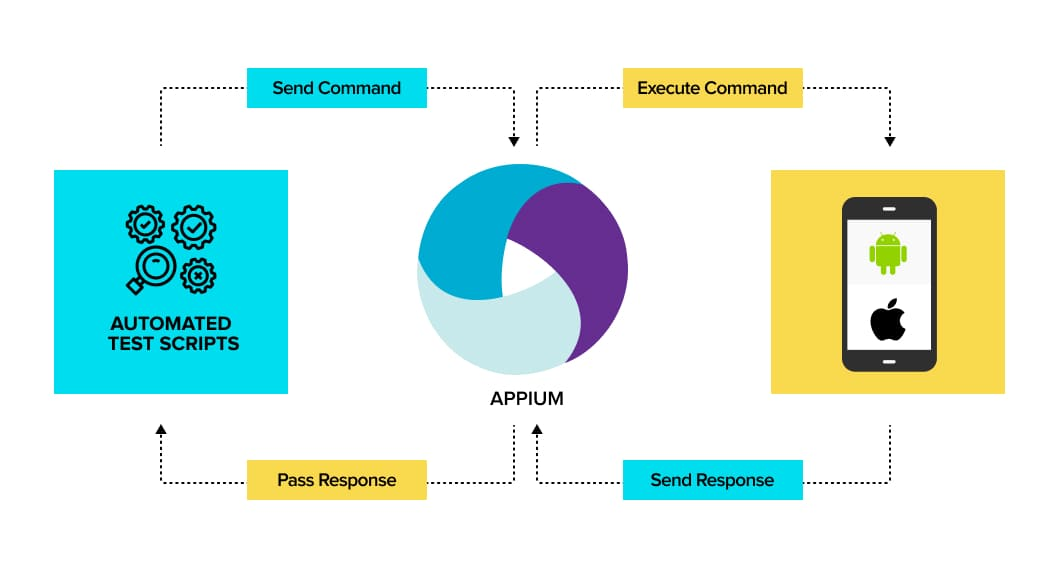 Components of Appium | Automation Testing Tools
