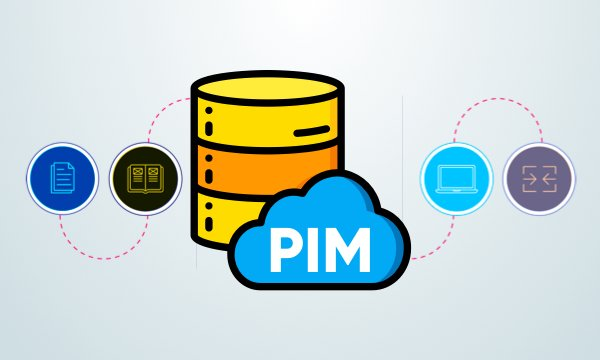 What is a product information management system